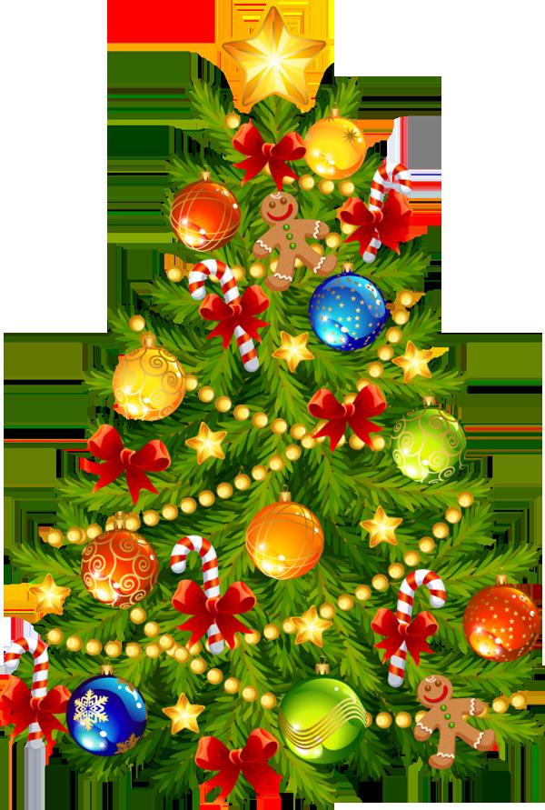 Sapinde Noel Christmas | School Time